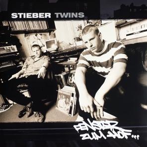 Stieber Twins - Fenster zum Hof 1