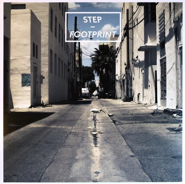Step - Footprint (360° Records)