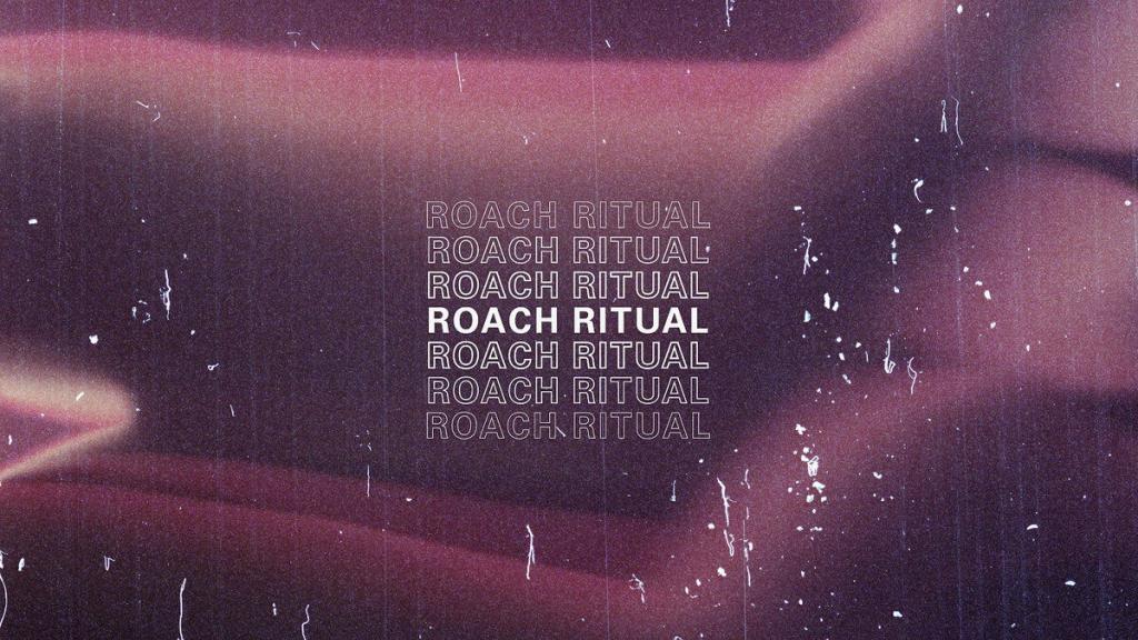 Joe Corfield - Roach Ritual - Radio Juicy