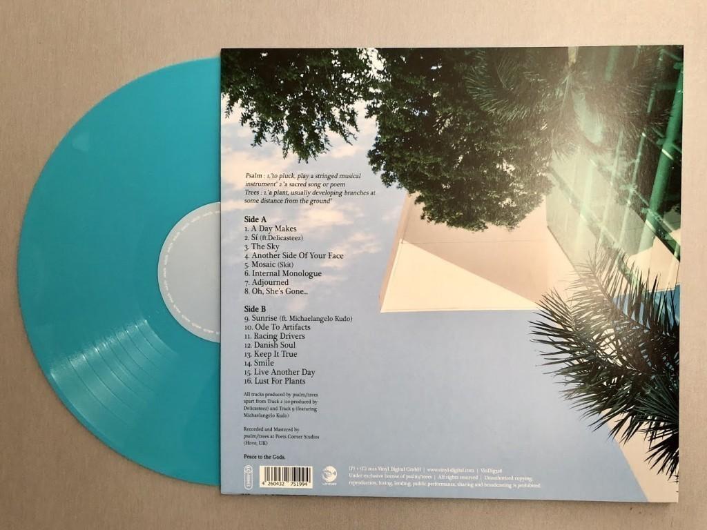 psalm-trees-sky-blue-turquoise-vinyl-2