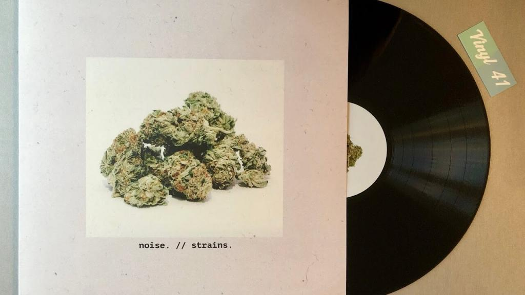 noise. - strains. (Vinyl / Dezi-Belle Records)