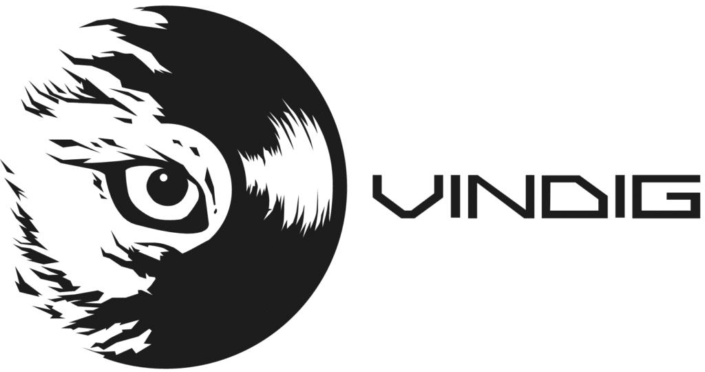 vinyl-digital