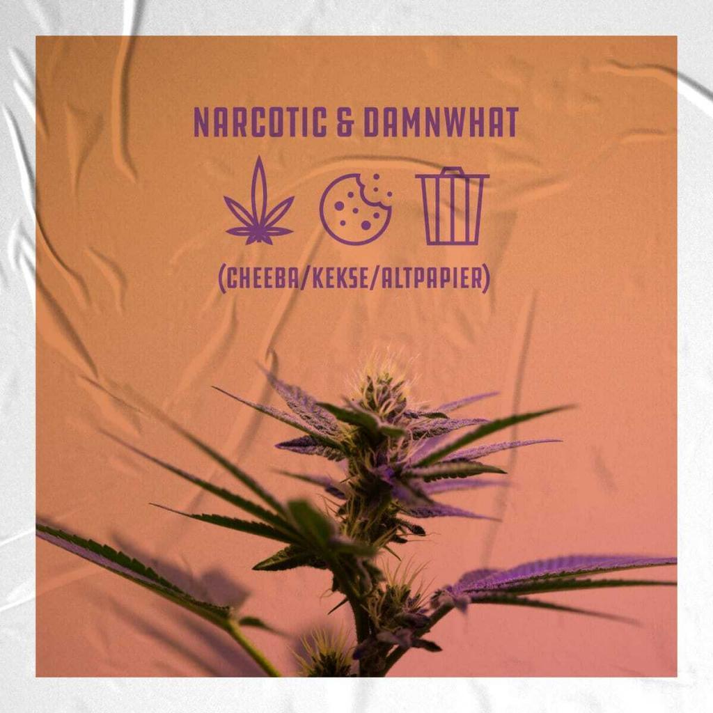 narcotic-x-damnwhat-bandcamp